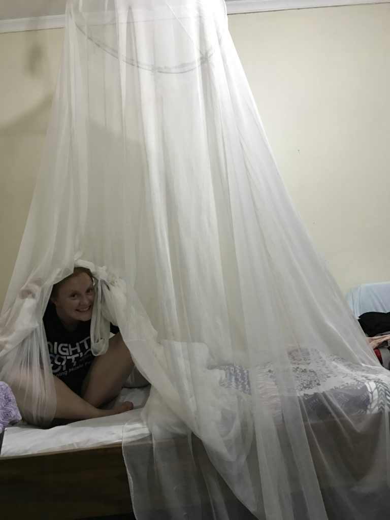 Personal mosquito nets